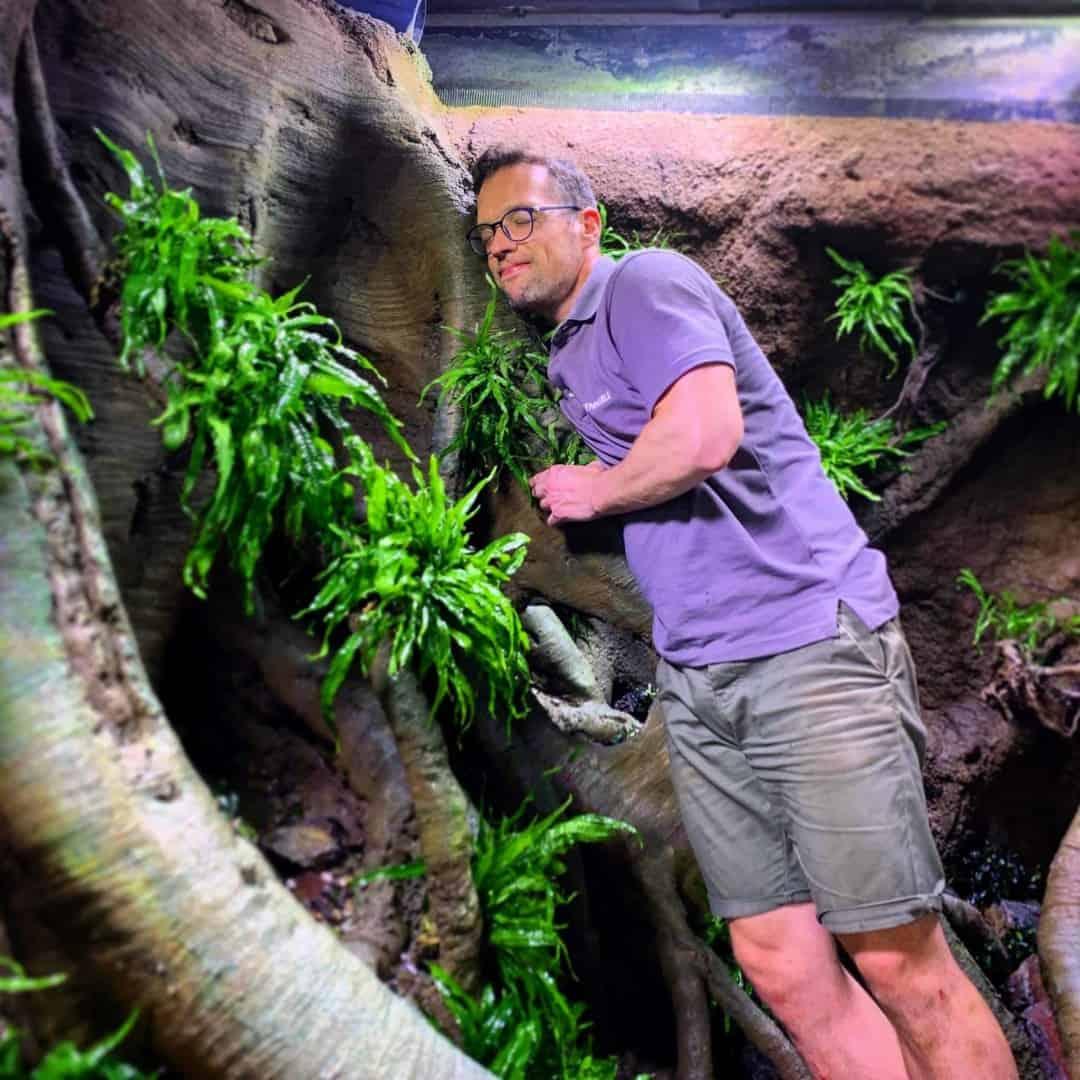 206 - Das 28.000 Liter Sumatra Flusslauf Aquarium im Tierpark Hagenbeck - Die Umsetzung und Einrichtung (Volker Jochum) 4