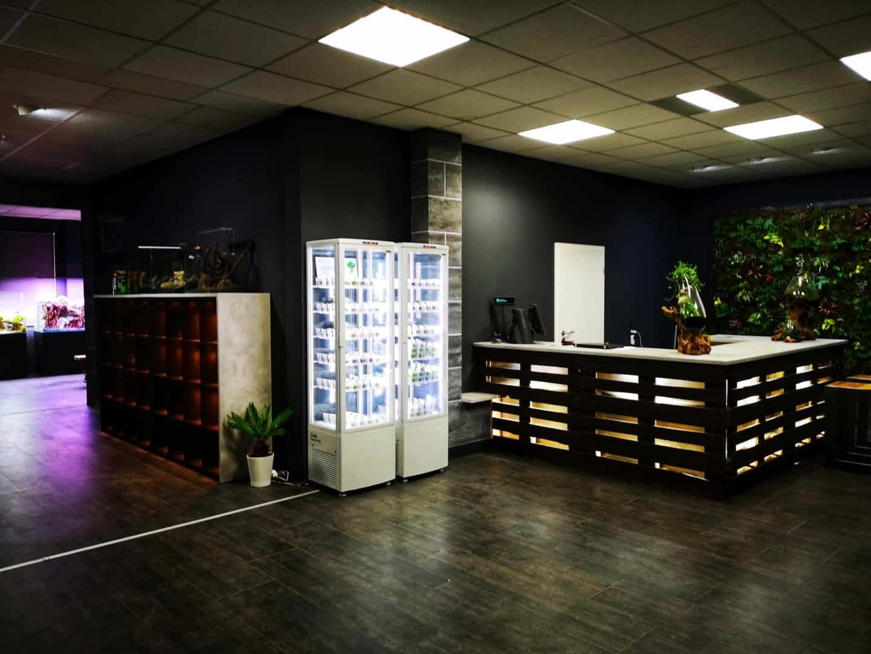 208 - Die Scapers Lounge - Neueröffnung des Mekkas für Naturaquarienliebhaber (Sascha Hoyer & Matthias Levy) 8