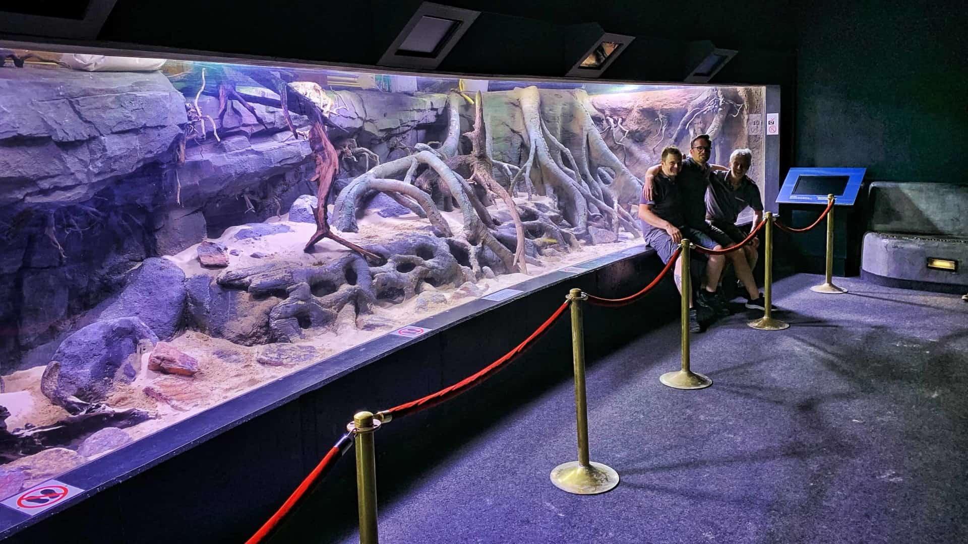 206 - Das 28.000 Liter Sumatra Flusslauf Aquarium im Tierpark Hagenbeck - Die Umsetzung und Einrichtung (Volker Jochum) 11
