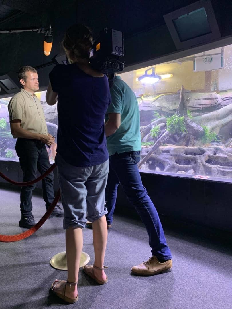 206 - Das 28.000 Liter Sumatra Flusslauf Aquarium im Tierpark Hagenbeck - Die Umsetzung und Einrichtung (Volker Jochum) 12