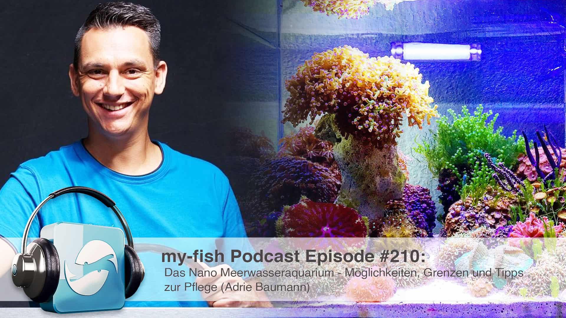 210: Das Nano Meerwasseraquarium - Möglichkeiten, Grenzen und Tipps zur Pflege (Adrie Baumann) 1