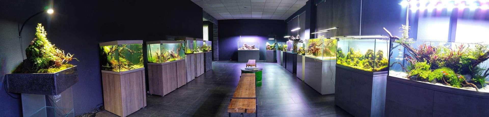208 - Die Scapers Lounge - Neueröffnung des Mekkas für Naturaquarienliebhaber (Sascha Hoyer & Matthias Levy) 18