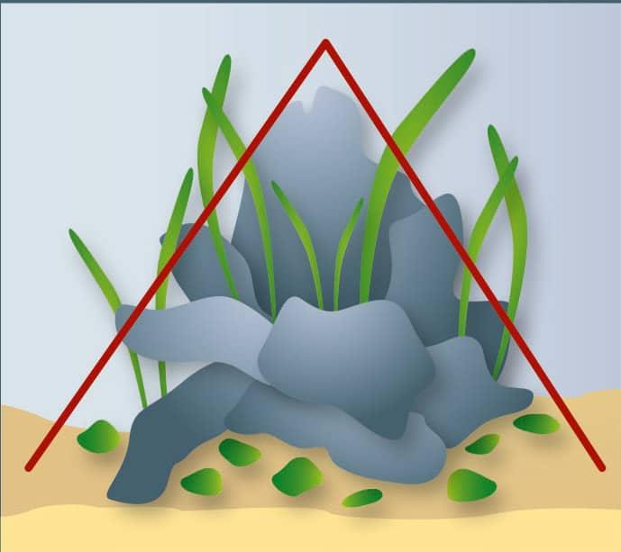Aquascaping 7
