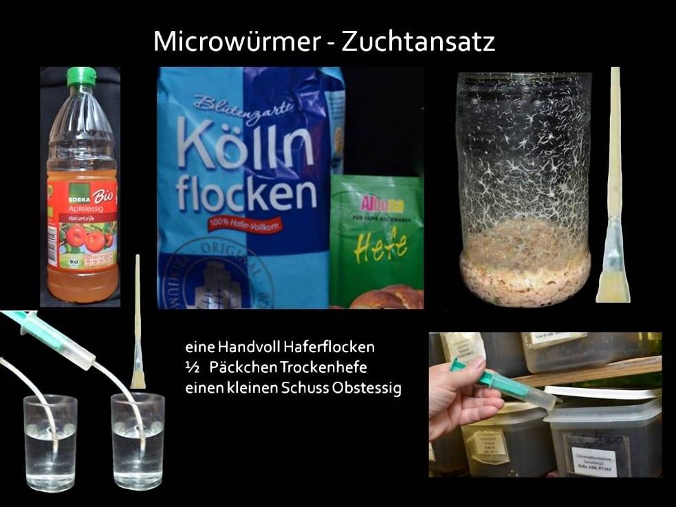 Futtertierzuchten 7
