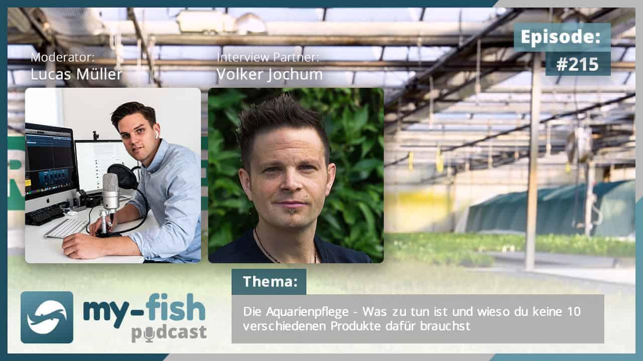 215: Die Aquarienpflege - Was zu tun ist und wieso du keine 10 verschiedenen Produkte dafür brauchst (Volker Jochum) 1
