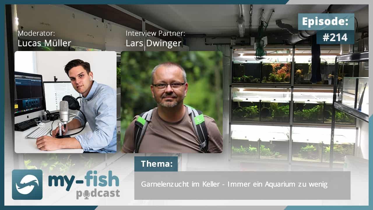 214: Garnelenzucht im Keller - Immer ein Aquarium zu wenig (Lars Dwinger) 1