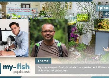 Podcast Episode #216: Aquarienvereine: Sind sie wirklich ausgestorben? Warum es sich lohnt mitzumachen (Lars Dwinger)