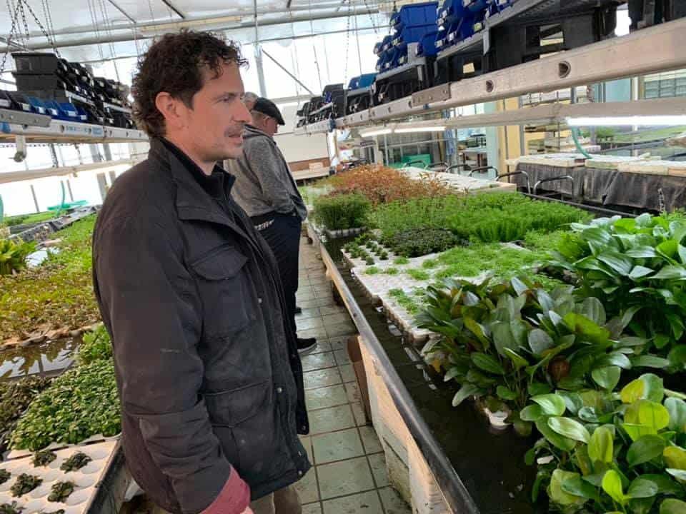 219: Wasserpflanzengärtnerei - Ein Blick hinter die Kulissen (Oliver Krause) 10