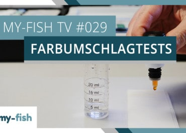 my-fish TV: Farbumschlagtests korrekt benutzen