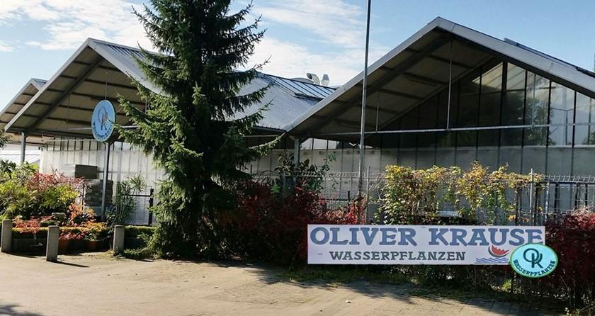 219: Wasserpflanzengärtnerei - Ein Blick hinter die Kulissen (Oliver Krause) 13