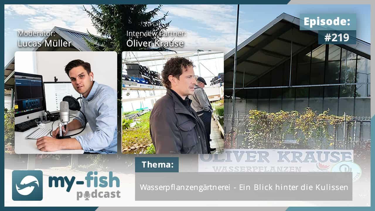 219: Wasserpflanzengärtnerei - Ein Blick hinter die Kulissen (Oliver Krause) 1