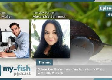 Podcast Episode #220: Schnecken fliehen aus dem Aquarium - Wieso, weshalb, warum? (Alexandra Behrendt)
