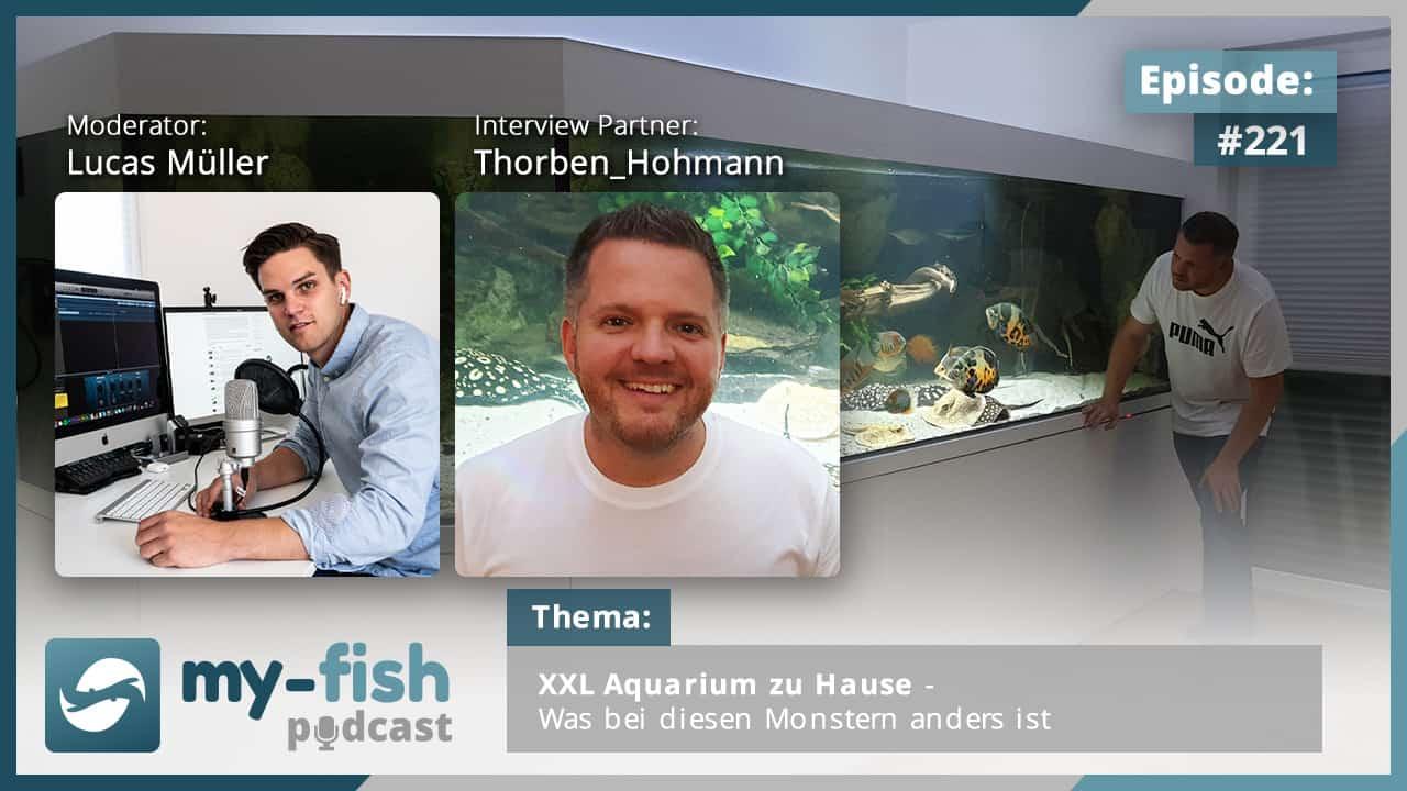 221: XXL Aquarium zu Hause - Was bei diesen Monstern anders ist (Thorben Hohmann) 1