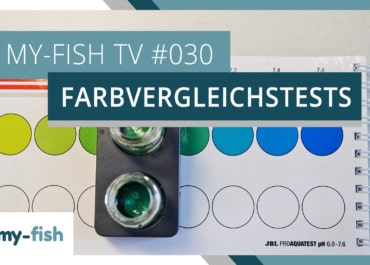 my-fish TV: Farbvergleichstests korrekt benutzen