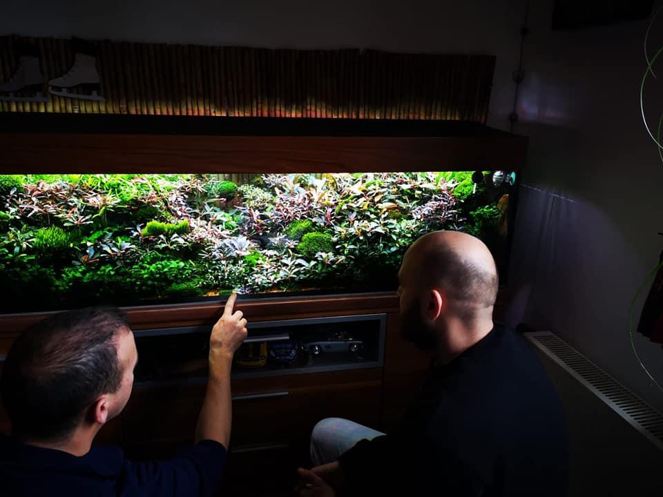 229: AQUaddicted! stellt sich vor - Zwei Aquaristikprofis mit Herz und Verstand (Kevin Höhlein und Andre Peukert) 7
