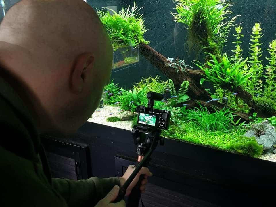229: AQUaddicted! stellt sich vor - Zwei Aquaristikprofis mit Herz und Verstand (Kevin Höhlein und Andre Peukert) 9