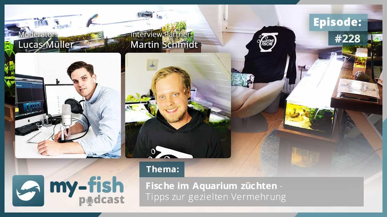 228: Fische im Aquarium züchten - Tipps zur gezielten Vermehrung (Martin Schmidt) 1