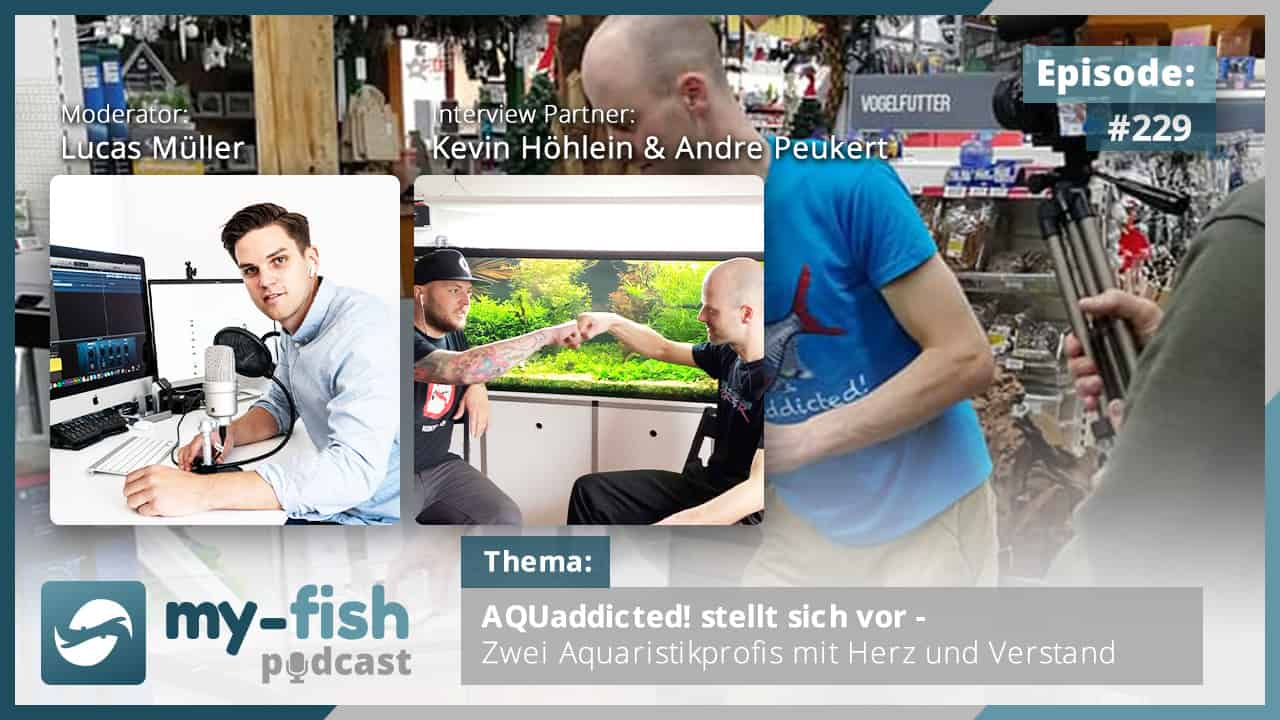274: Der my-fish Podcast Jahresrückblick 2020 - 45 Episoden mit interessanten Personen aus der Aquaristik 44