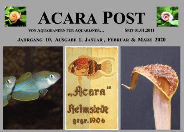 Acara-Post Januar - März 2020 - jetzt kostenlos lesen