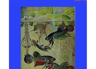 OAM Sammelheft 2019 ist erschienen - kostenlos lesen