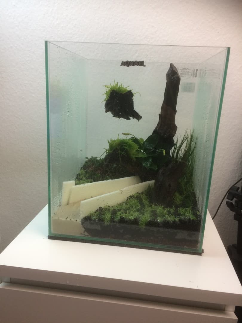 235: Wie viel kostet ein Aquarium? Budget für Anschaffung und Unterhaltung eines Aquariums 5