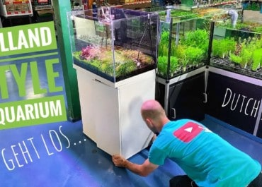 AQUaddicted! - Video Tipp: Wir machen Platz für ein Hollandaquarium - Dutch Style
