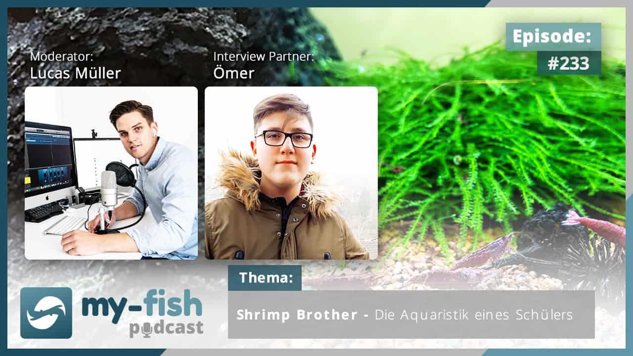 233: Shrimp Brother - Die Aquaristik eines Schülers (Ömer) 1
