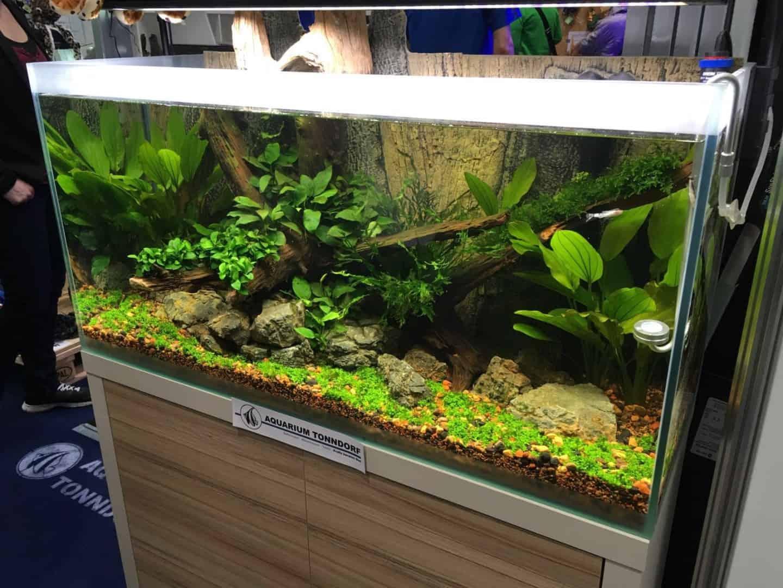237: Stromverbrauch im Aquarium - So senkst du die Stromkosten 20