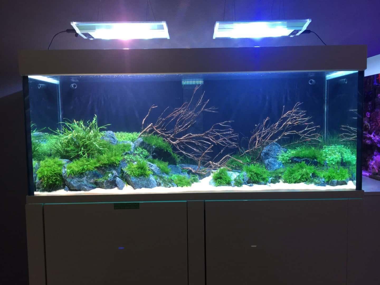 237: Stromverbrauch im Aquarium - So senkst du die Stromkosten 3
