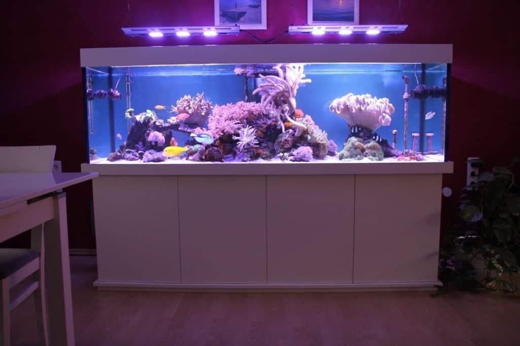 237: Stromverbrauch im Aquarium - So senkst du die Stromkosten 6