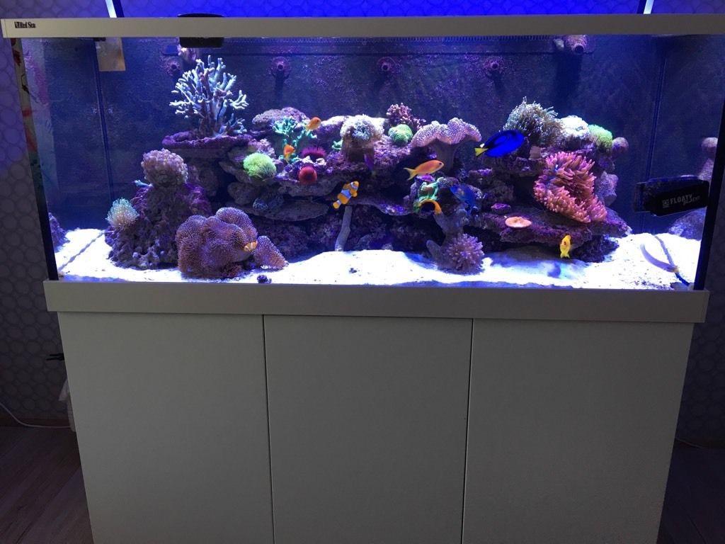 237: Stromverbrauch im Aquarium - So senkst du die Stromkosten 10