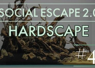 GarnelenTv: Social Escape 2.0 | HARDSCAPE IM AQUASCAPE