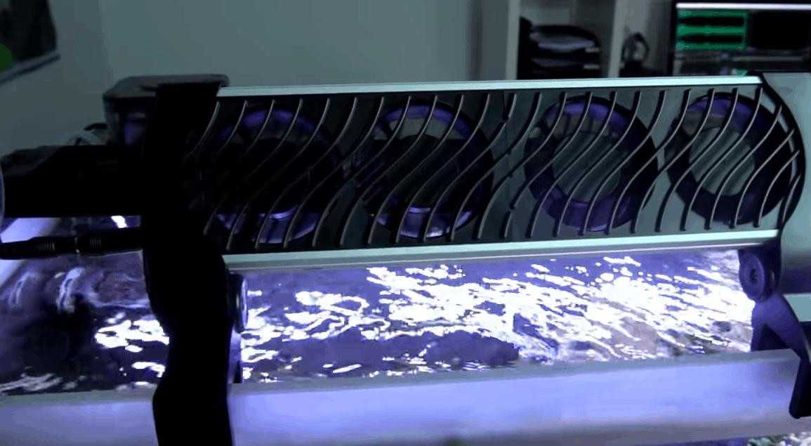 243: Achtung Sommerhitze im Aquarium - Wassertemperatur richtig kühlen 5