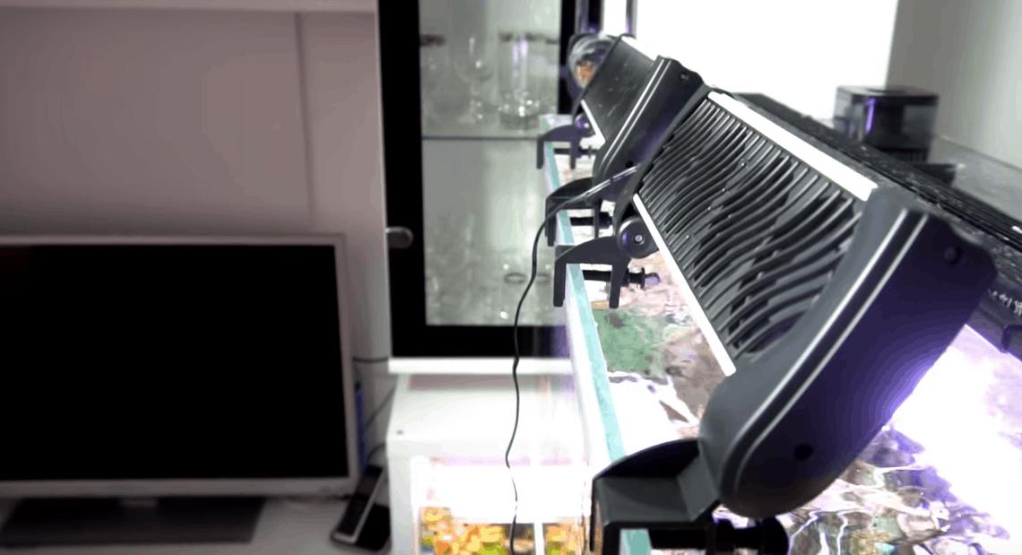 243: Achtung Sommerhitze im Aquarium - Wassertemperatur richtig kühlen 6