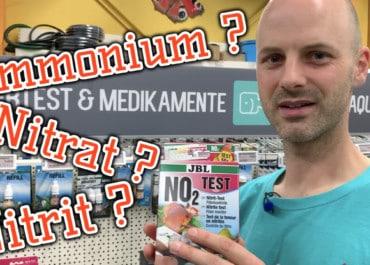 AQUaddicted! - Video Tipp: Der Nährstoffkreislauf - Nitrat, Nitrit, Ammonium