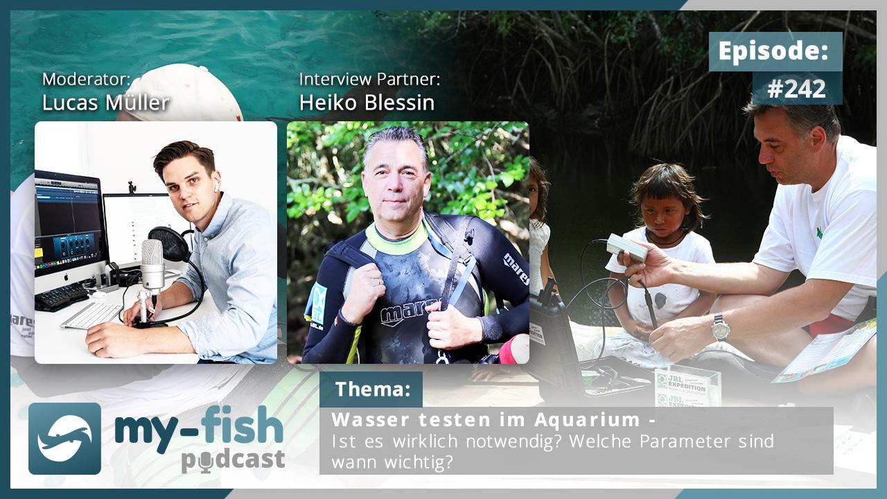 242: Wasser testen im Aquarium – Ist es wirklich notwendig? Welche Parameter sind wann wichtig? (Heiko Blessin)