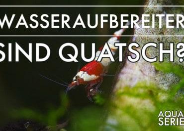 GarnelenTv: Wasseraufbereiter im Aquarium