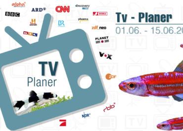 TV-Liste vom 01.06. - 15.06.2020