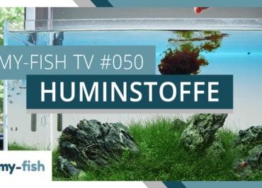 my-fish TV: Warum Huminstoffe im Aquarium wichtig & gesund sind