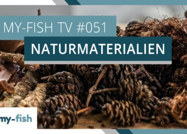 my-fish TV: Naturprodukte im Aquarium einsetzen