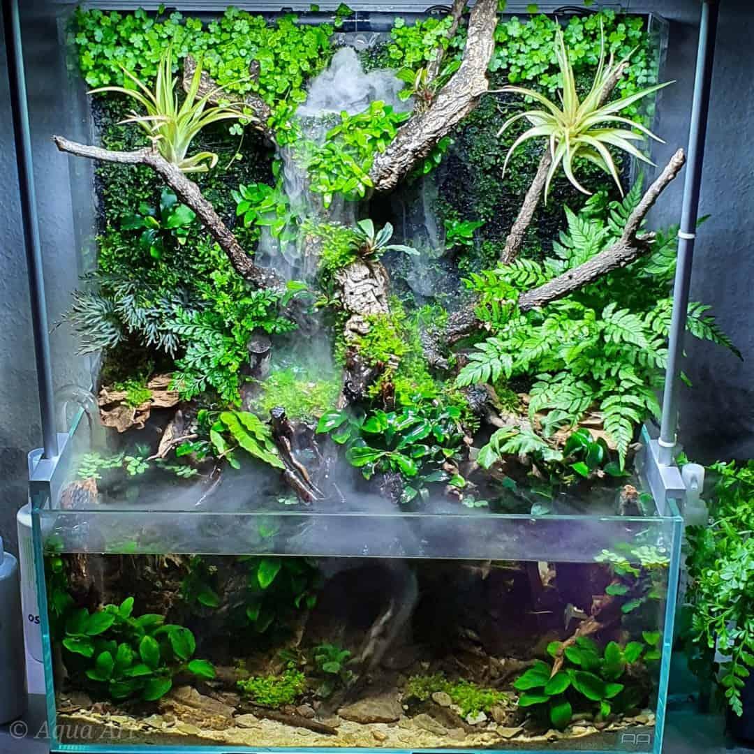 Layout 119 Green Swamp (24 L) 1