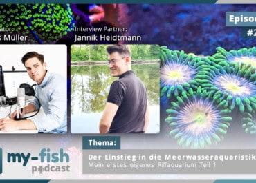 Podcast Episode #254: Der Einstieg in die Meerwasseraquaristik - Mein erstes eigenes Riffaquarium Teil 1 (Jannik Heidtmann)