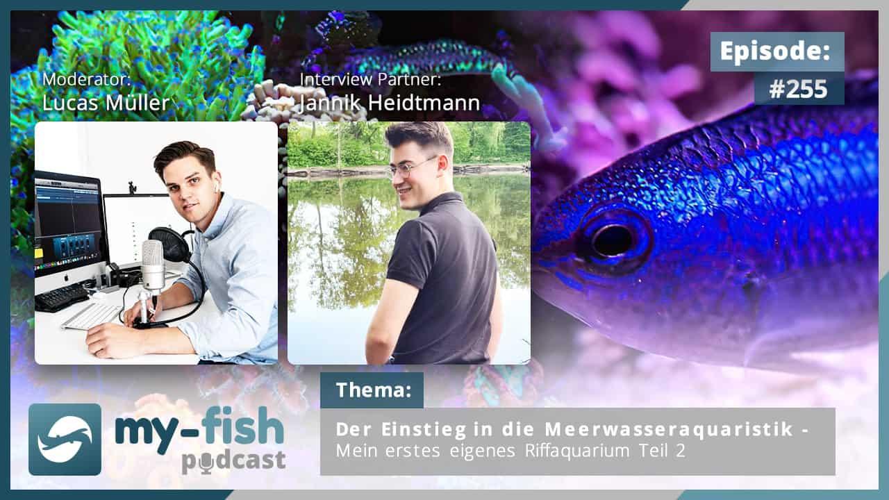 274: Der my-fish Podcast Jahresrückblick 2020 - 45 Episoden mit interessanten Personen aus der Aquaristik 20