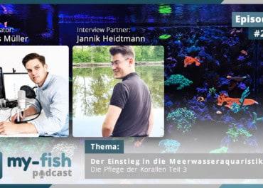 Podcast Episode #256: Der Einstieg in die Meerwasseraquaristik Teil 3 - Die Pflege der Korallen (Jannik Heidtmann)
