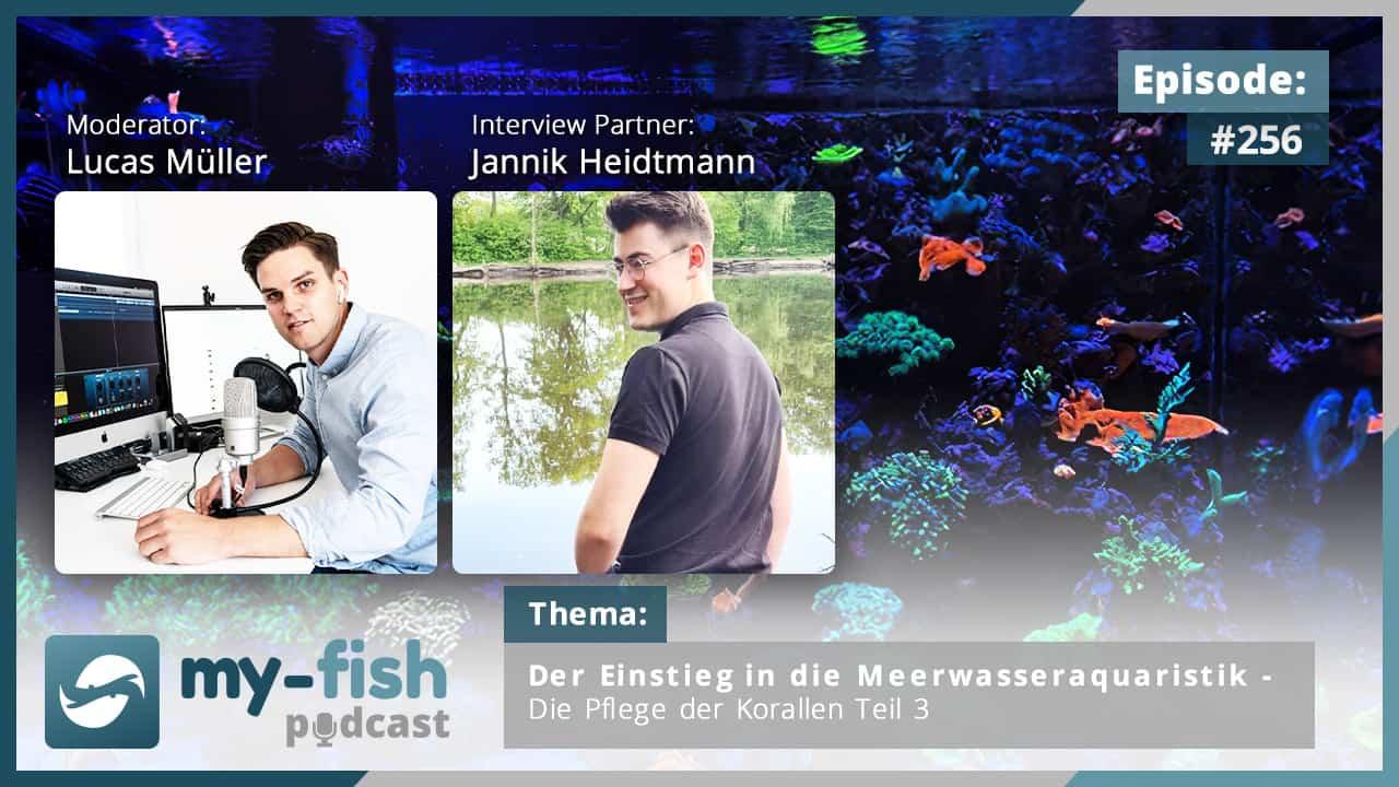 274: Der my-fish Podcast Jahresrückblick 2020 - 45 Episoden mit interessanten Personen aus der Aquaristik 19