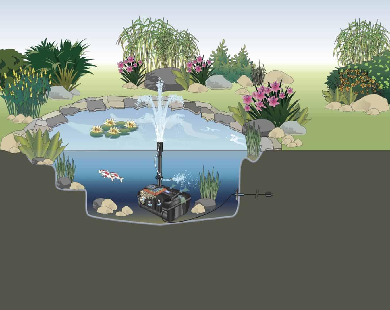 Der Teichbau als DIY-Projekt – Kleine Teiche einfach umgesetzt 5