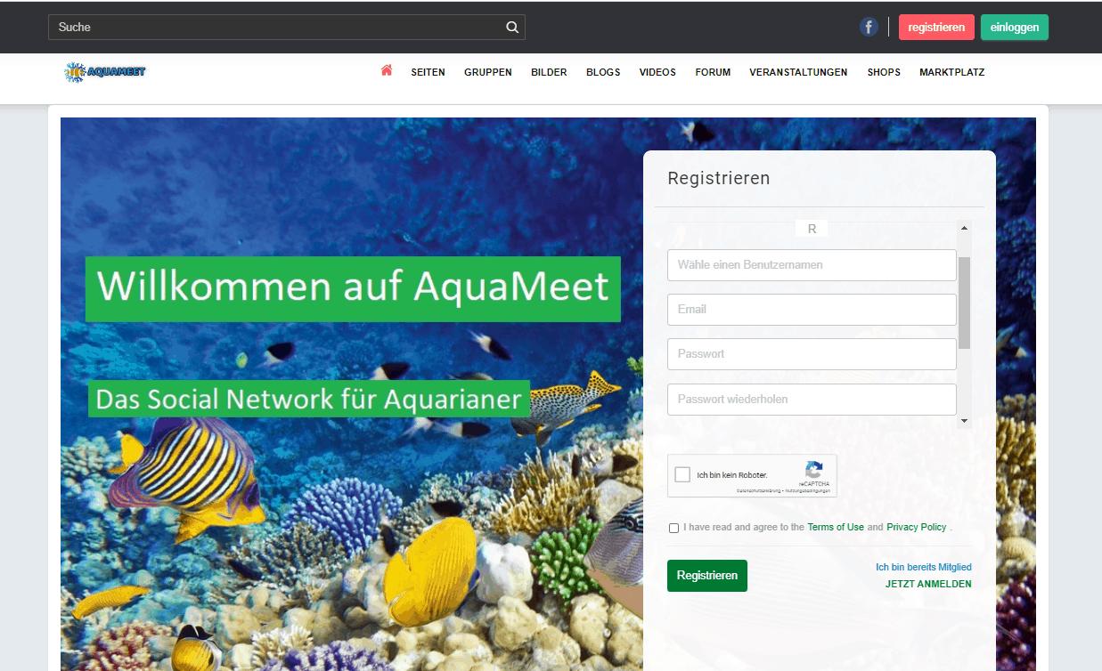 257: Aquameet - Ein Soziales Netzwerk für Aquarianer (Kevin Borg) 2