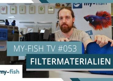 my-fish TV: Filtermaterialien im Aquarium