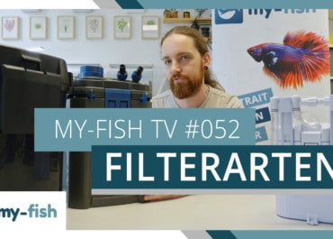 my-fish TV: Filterarten im Aquarium