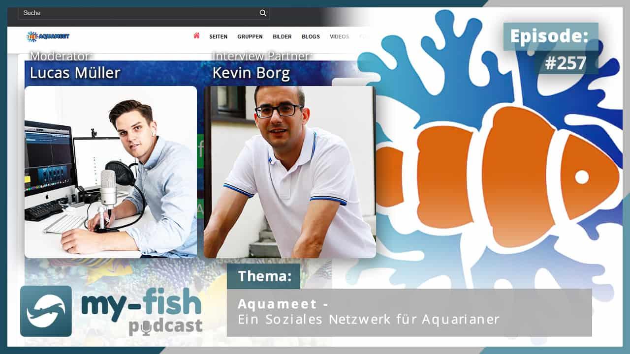 274: Der my-fish Podcast Jahresrückblick 2020 - 45 Episoden mit interessanten Personen aus der Aquaristik 18